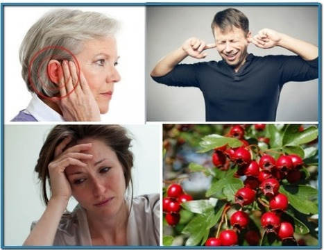 Tinnitus 911 - Stop Ear Ringing Fast, Tinnitus Symptoms