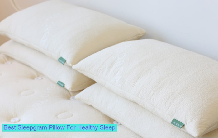 SleepGram-Pillow-products
